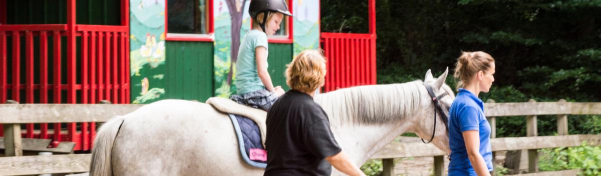 Paardrijden voor mensen met een beperking | Fysiotherapie op het paard